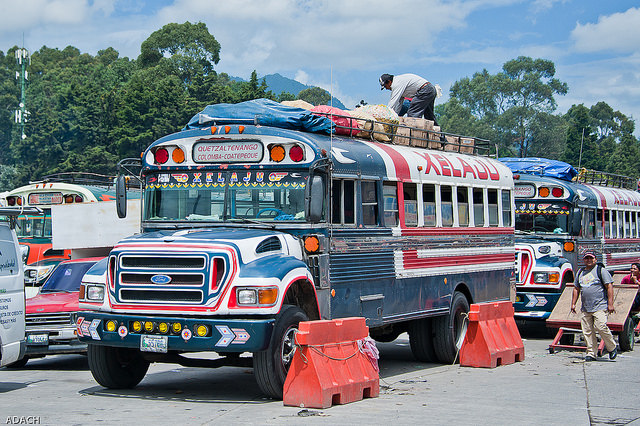 chicken-bus